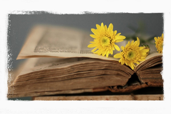 Vender Livros Antigos